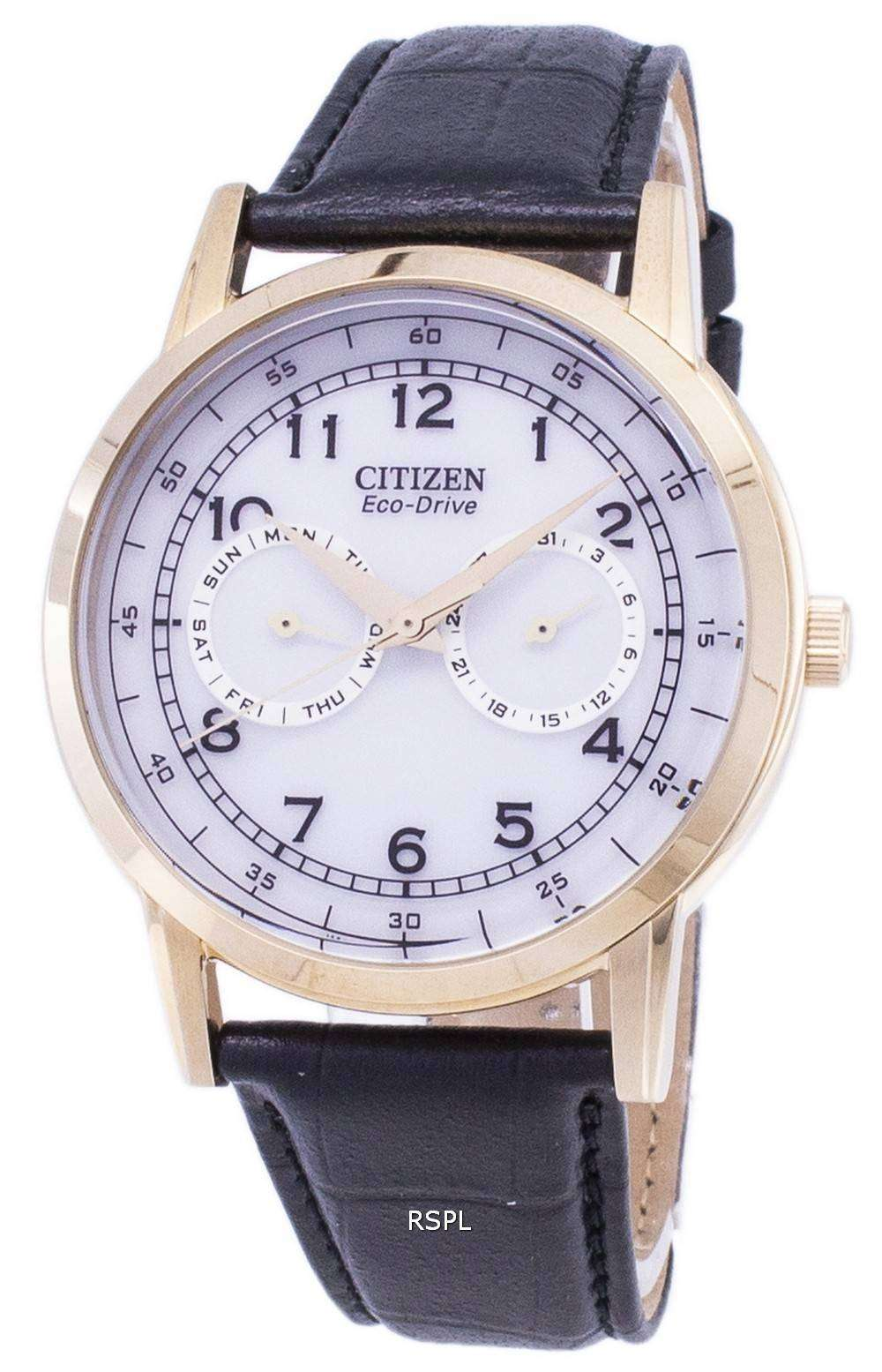 premium selection 45778 48531 Citizen Eco-Drive Day And Date Sub-Dials AO9003-16A Men's Watch
