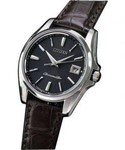 Citizen Eco-Drive AQ4020-03E Titanium Japan Made Men's Watch